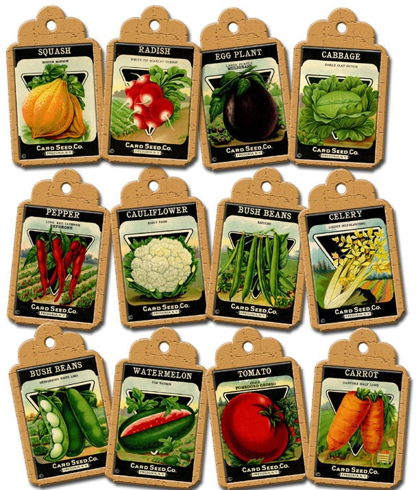 VeGeTaBLe SeeD PaCkETs ViNtAgE ArT Hang/Gift by thephotocube