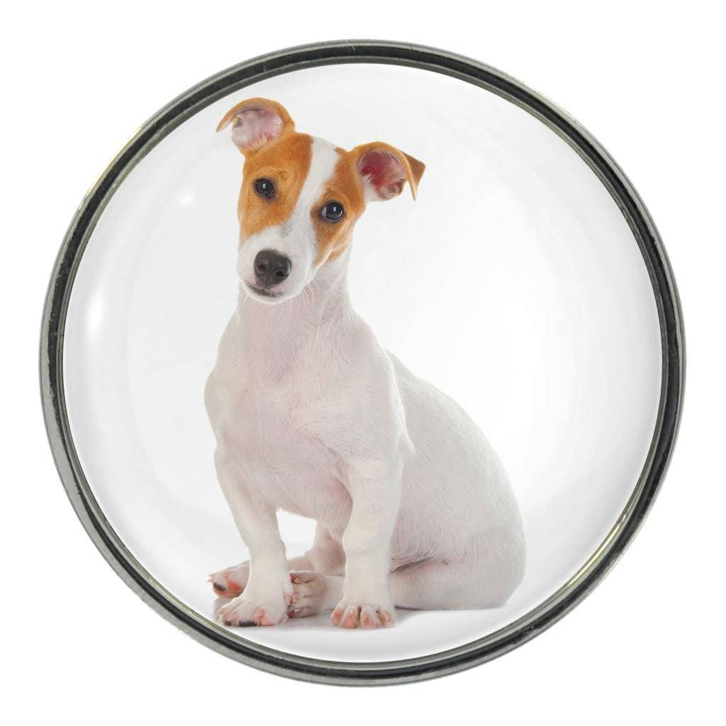 Jack Russell Image On Metal Pin Badge
