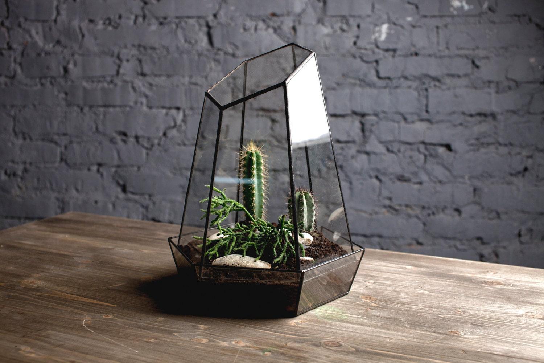 "glass terrarium ""crystal"" - boxwoodtree"