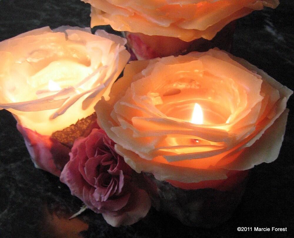 Мед Янтарный Rose Garden компонент - чистый пчелиный воск, лепестками роз - Уникальные розы Свечи для подарков, Свадьбы, Рождества, Home Decor по Марси Лесная
