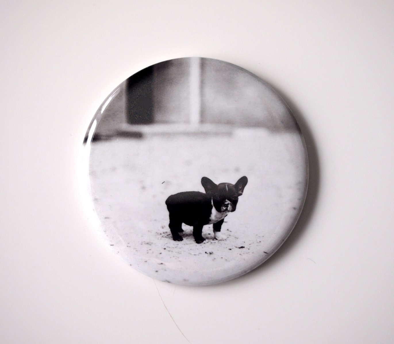 "Baby French Bulldog  - 2.25"" Magnet - BucktoothedBunny"