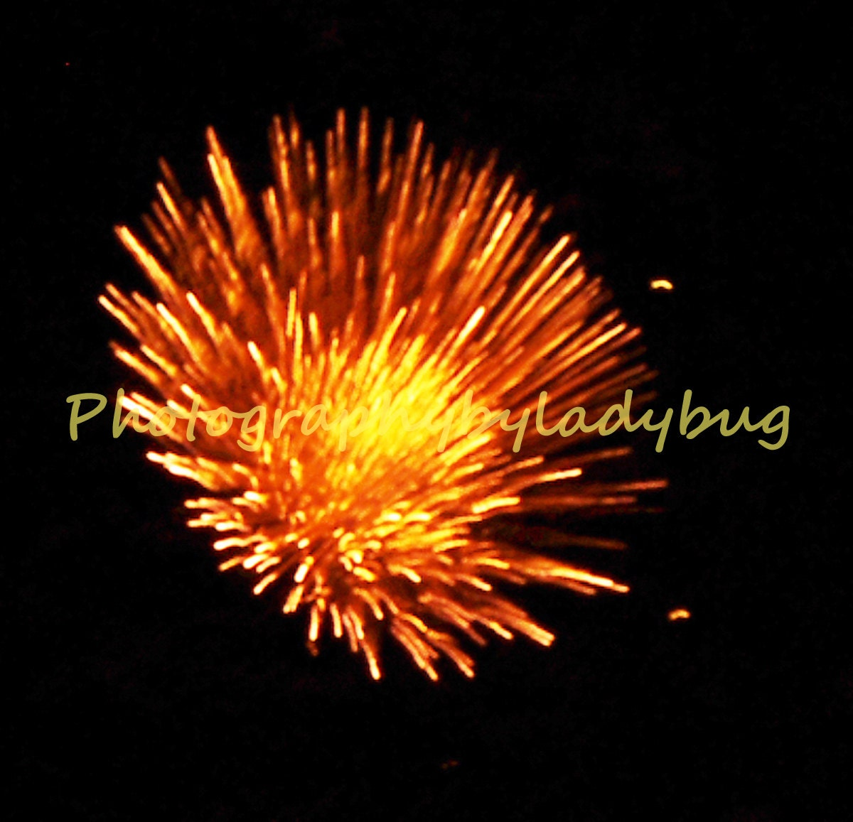 Burst of Energy Firework - 5 x 7 print - PhotographybyLadybug