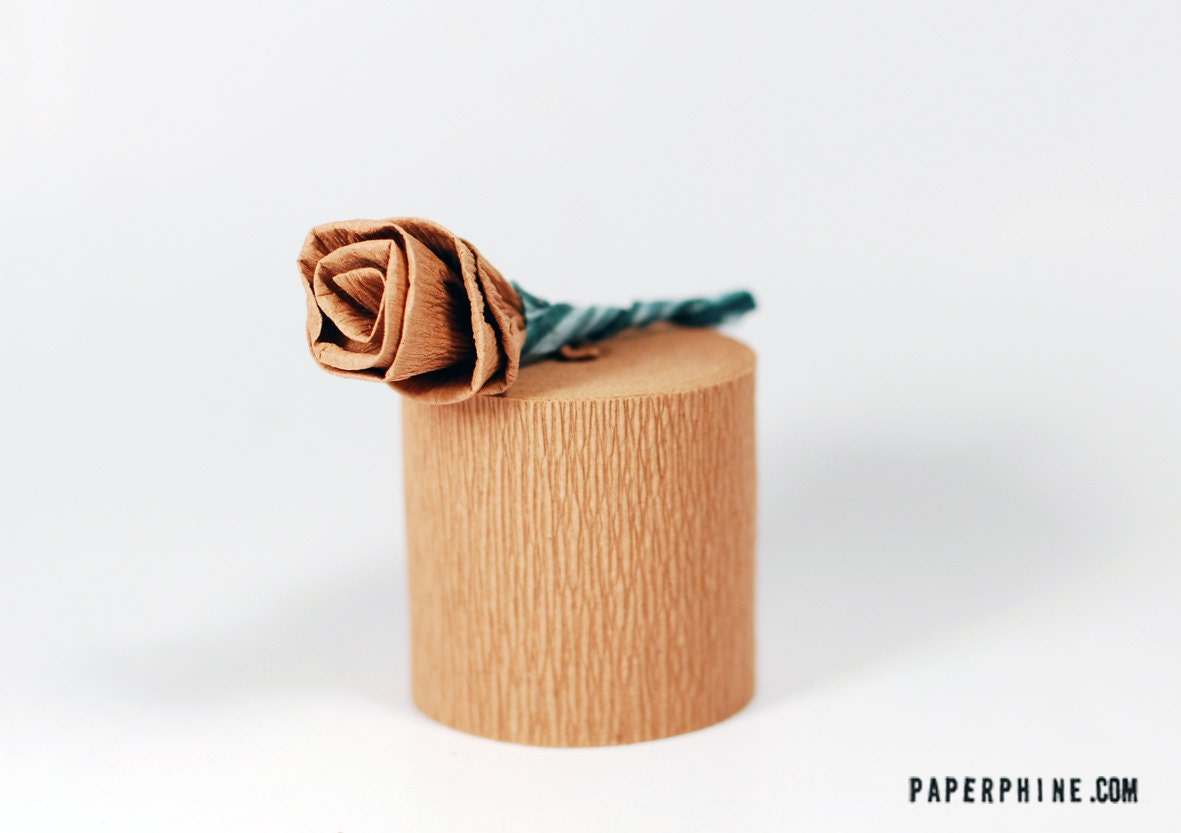 Kraft Crepe Paper Streamers - for Party Decorations, Crafting and more - PaperPhine