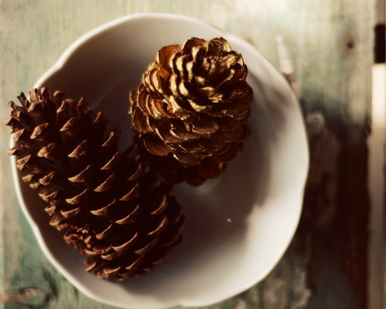 Winter pinecone photograph- brown, gold, cream, rustic, woodland, still life, bowl, holiday, christmas, winter decor, fine art print, 8x10 - dullbluelight