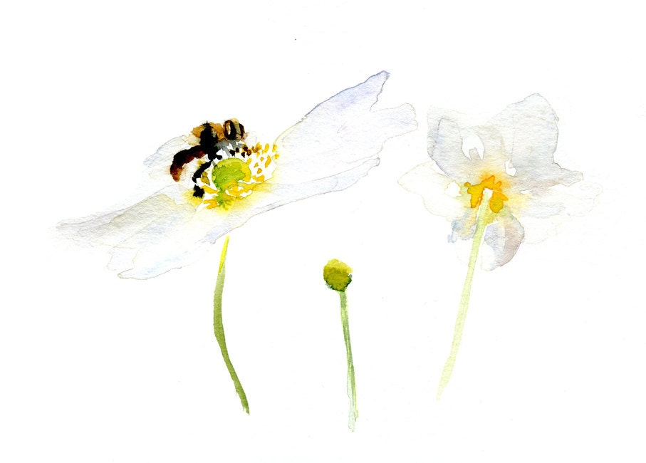 White flower and bee Watercolor Painting on Paper. Original Flower Art. Flower and Bee Painting by Michelle Dujardin - Zendrawing