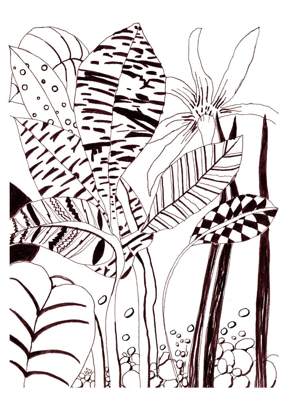 Line Art Limited : Line drawing flower ink pen modern by dreamymeisme