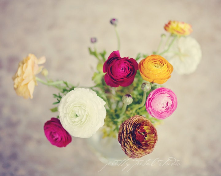 Fine Art Photograph, Multi Color Bouquet of Ranunculus Flowers, Shabby Chic Photo, Floral Art , Yellow, White, Pink, Red . 8x10 Print - PrettyPetalStudio