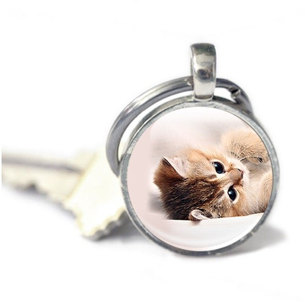 Cat Keyring Key chain gift gift for cat lover  owner Keychain cat accessories cat photo keyring