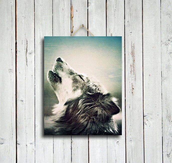 Howling wolf - 11x14 in. print - wolf photo - wolf howling photo - wolf decor - wolf art - wolf dog - native american style - native america