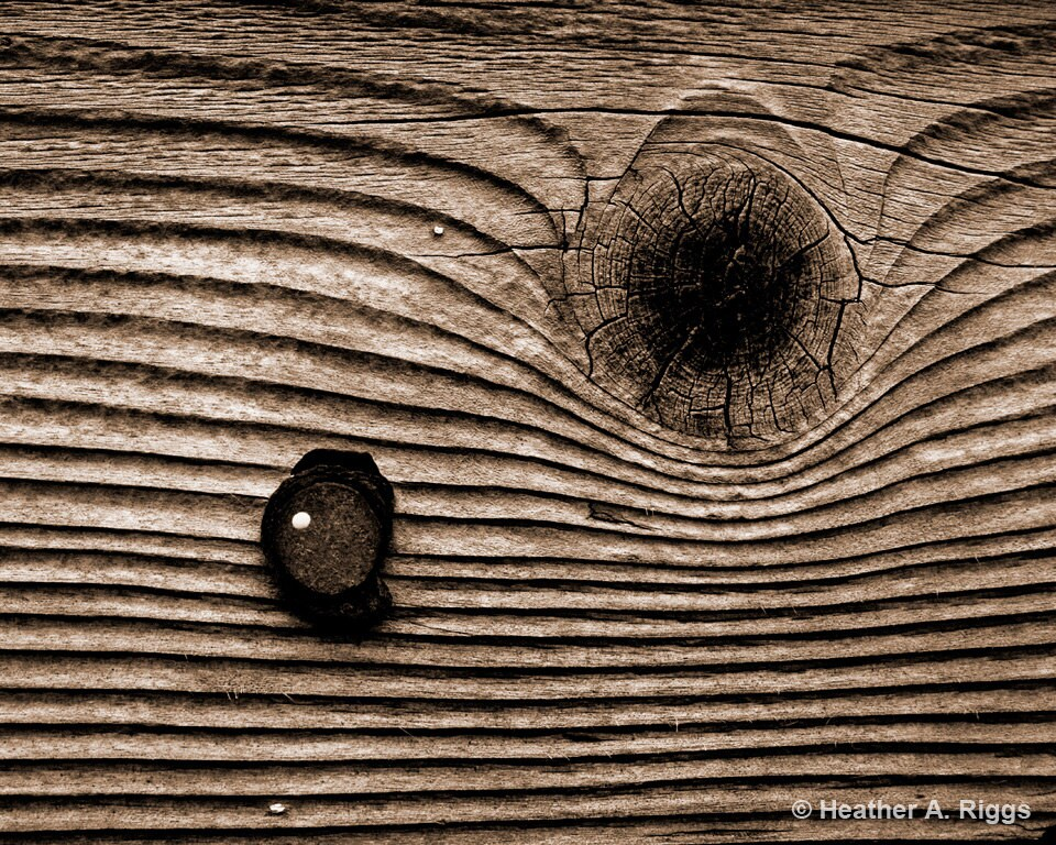 the knot rustic weathered wood grain knotted wood by shyphotog