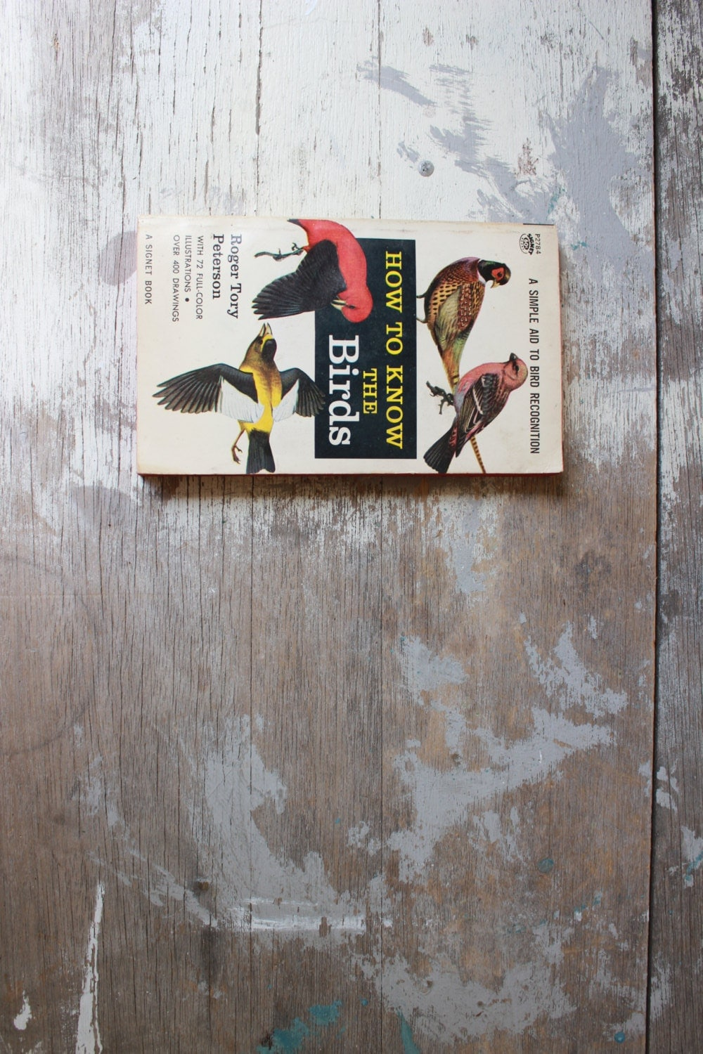vintage bird watching book - experimentalvintage