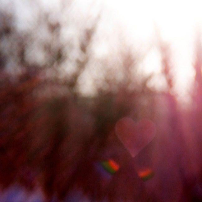 Abstract Nature Photo, Red Heart, Burgundy, Forest, Valentines Day Photography, 8x8 Fine Art Print - TheShutterbugEye