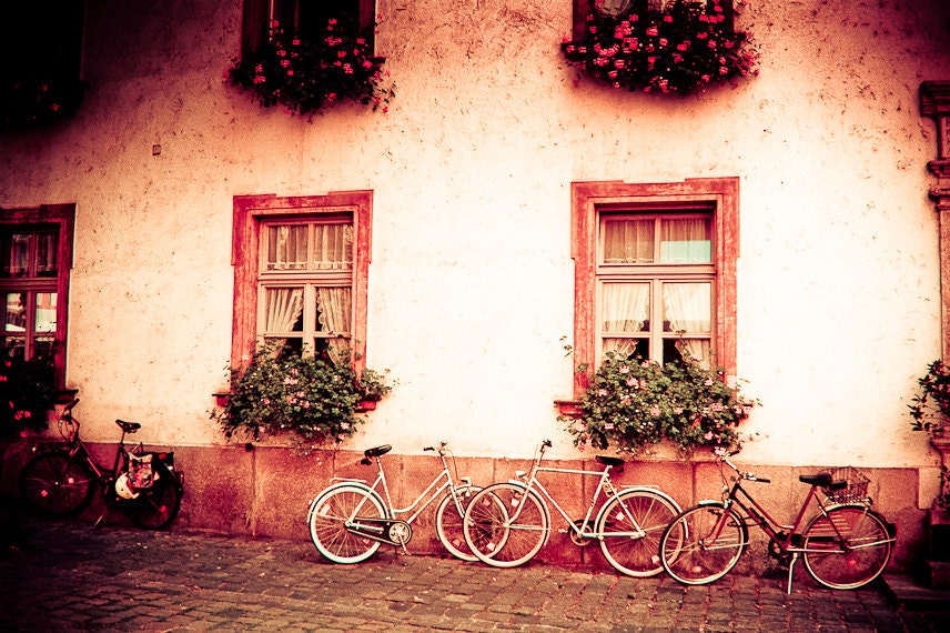 Bicycle Photography germany shabby chic flowers window boxes geraniums pink green Radstander, the bike stand 11x14 fine art - brandMOJOimages