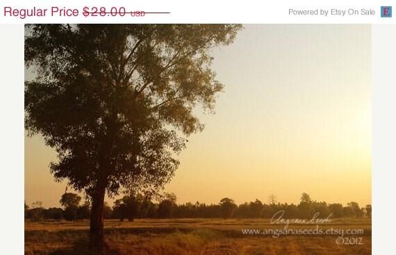CIJ SALE Sunset photo, Sun flare photograph, peaceful, Golden flare, Rice paddy fields, Travel photography, 8x12, Farmland wall art, Thaila - AngsanaSeedsPhoto
