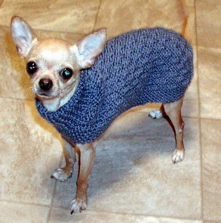 Yorkie Sweater Pattern 66