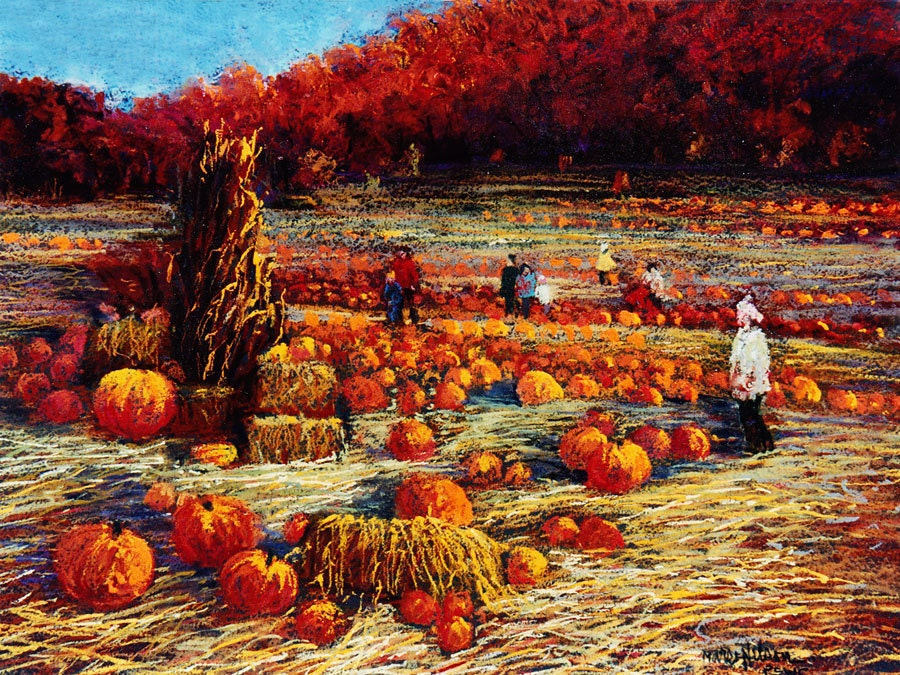 Pumpkin Patch Fall Landscape Pumpkin Field By