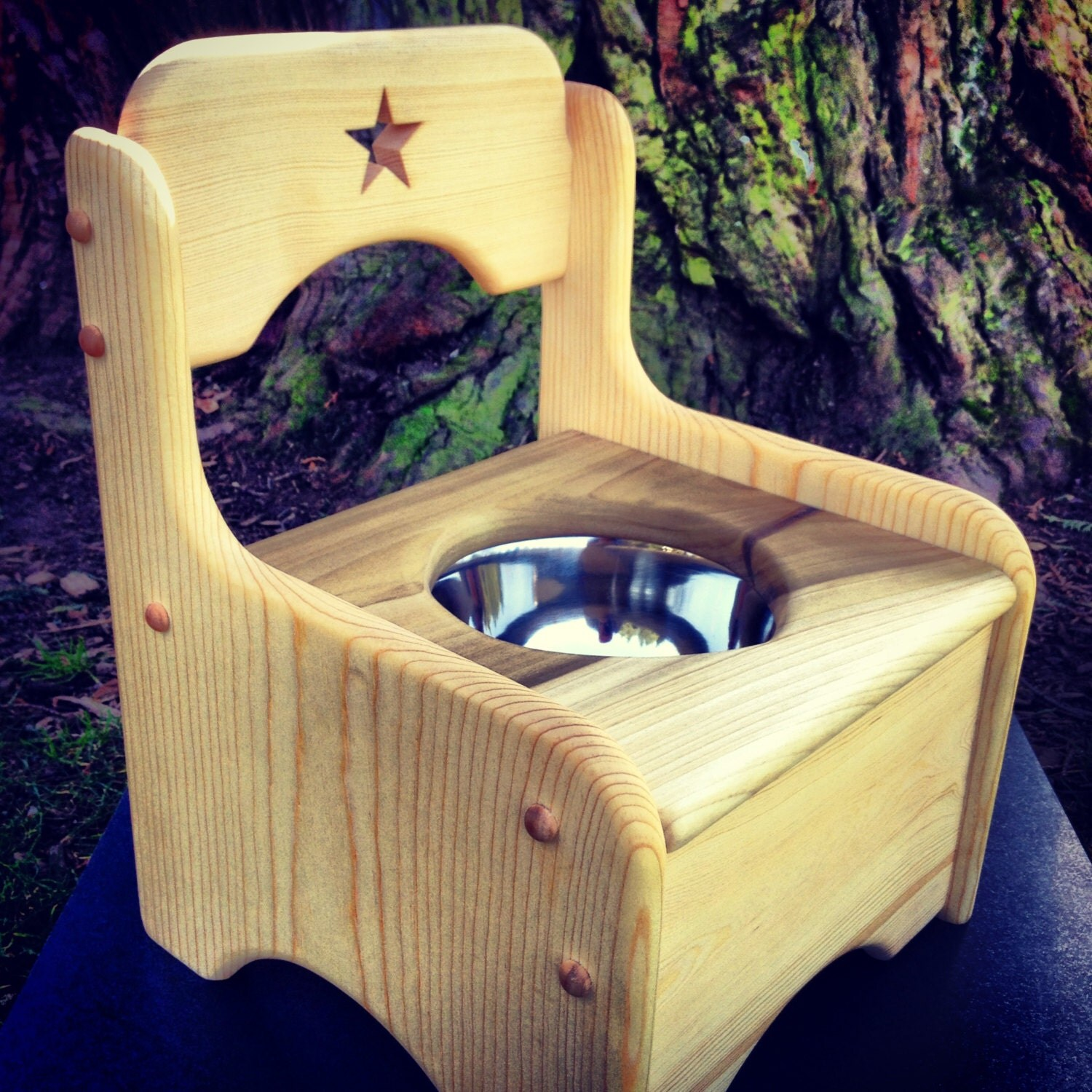 Star Potty Chair by Heartwood Natural Toys