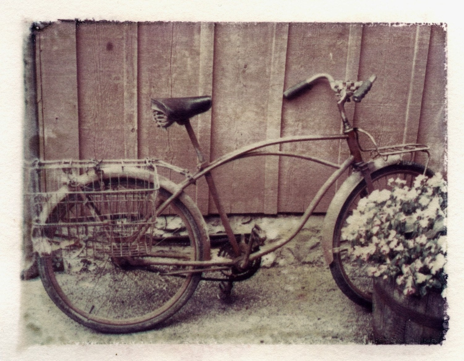 Polaroid transfer Bicycle original - jalinde