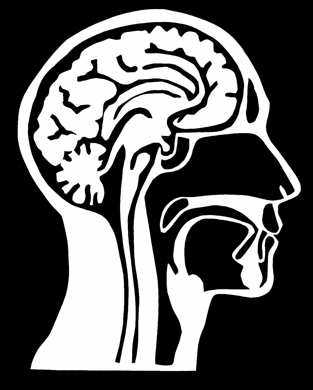 human brain essay The brain forms part of the central nervous system together with the spinal cord the body's nervous system is the center for communication and.