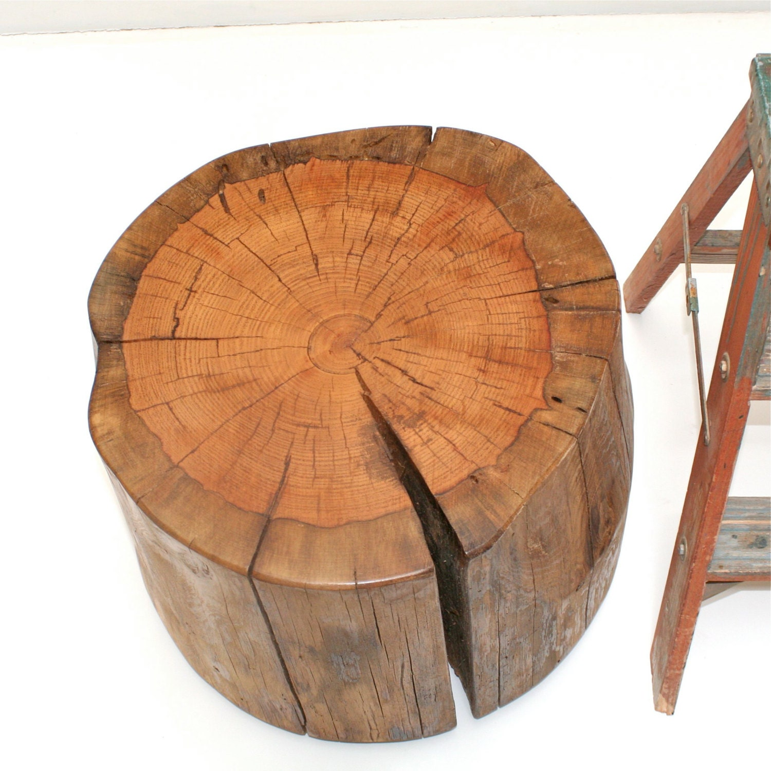 Large Wood Tree Stump Coffee Table On Casters By