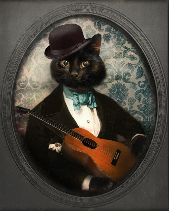 Black Cat Print Cat Art Animal Photography Cat Photo Portrait Photography 8x10 Print Irish - Felix Fitzpatrick - TheLonelyPixel