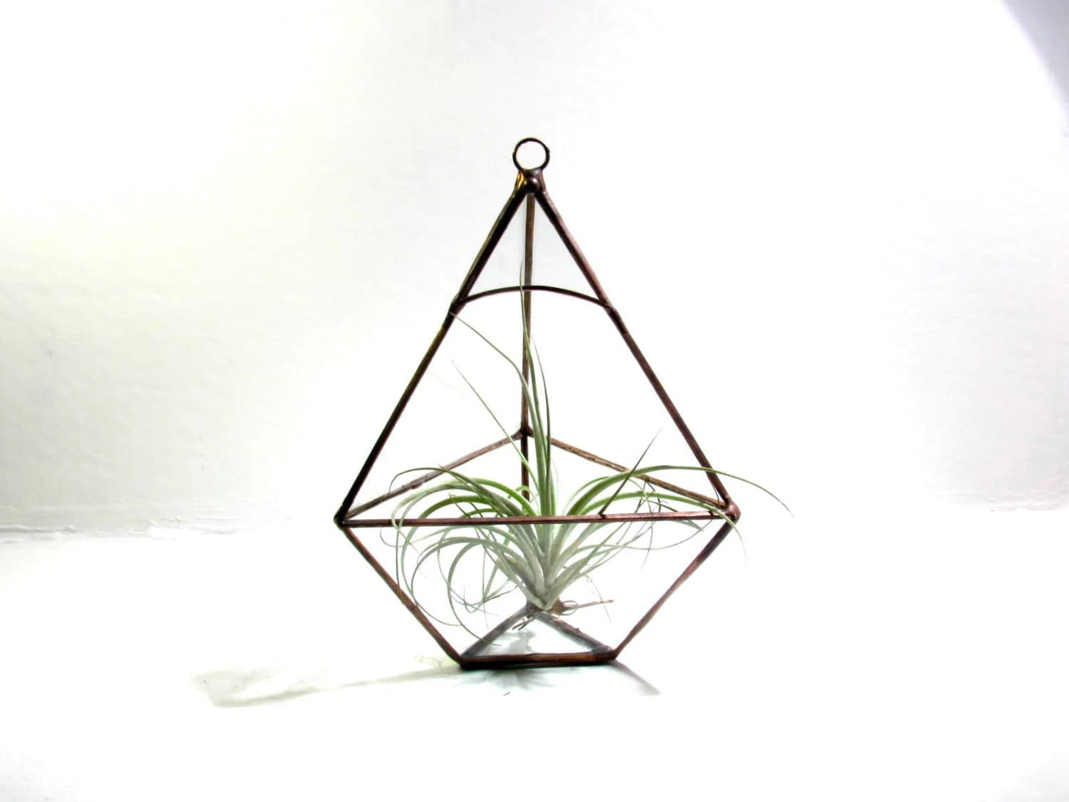 Terrarium - Air Plant -  Geometric Pyramid Terrarium - DIY Pyramid Kit - lonesomehobo