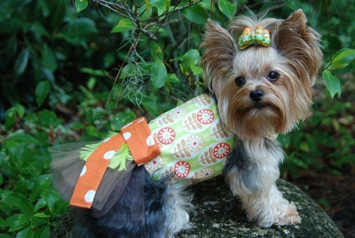 Ретро Цветы Туту Harness собак платье - только 1 Доступные размеры SM
