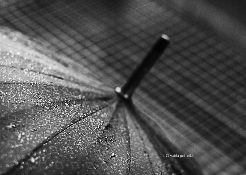 About the Rain - 5x7 inches Fine Art Photograph - rain image in black and white - signed limited edition - VaidaPhoto