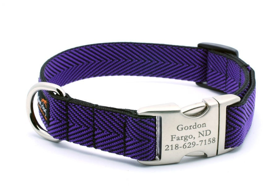 Engraved Buckle Dog Collars Uk