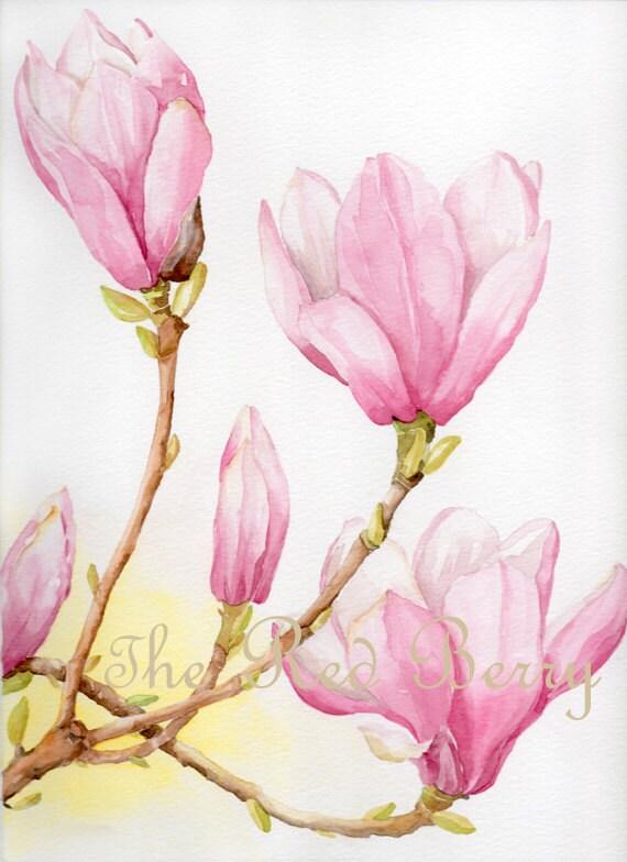 flower watercolor magnolias floral art watercolor by rougebaie