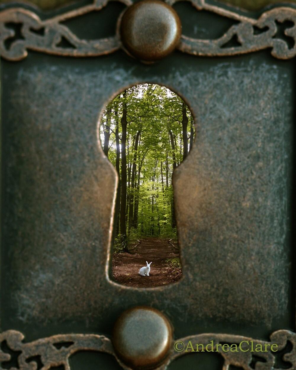 Alice in Wonderland Rabbit Follow Me 8x10 Fine Art Photograph - PhotoReverie