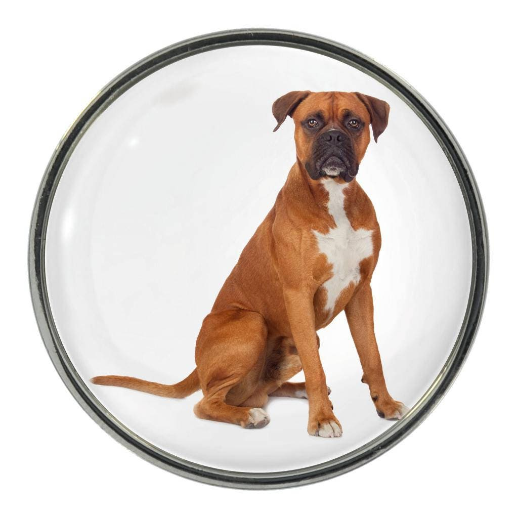Boxer Dog Image On Metal Pin Badge