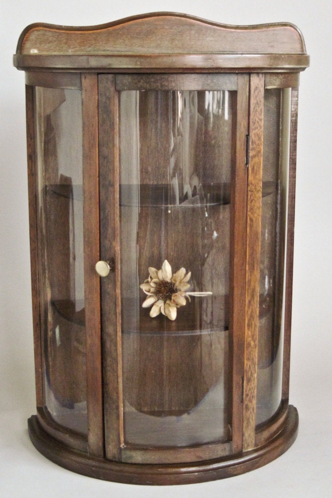 Curved Glass Curio Cabinet Mini Wall Hanging By