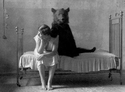 Bear on the Bed - Daveidaho