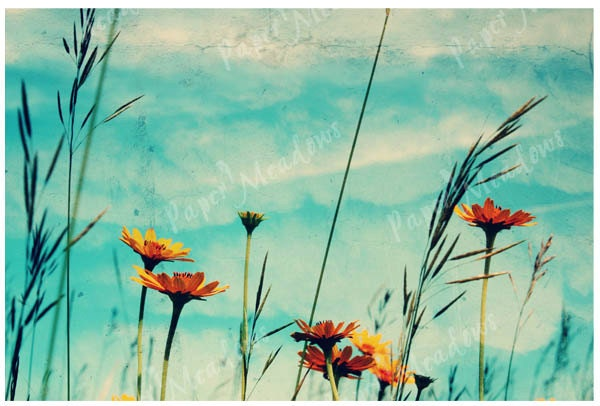 Orange and Blue Sky and Flowers Photo Nursery Image Download, For Girls Room, Clouds, Dreamy Meadow 12x18, Cottage Chic - PaperMeadows