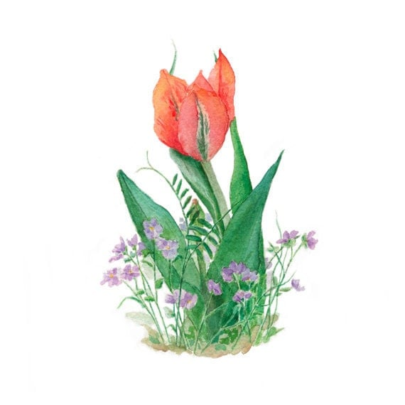 Red Tulip Watercolor Painting - Tulip Print Spring Flower Violets Painting Botanical Red Orange Red Purple Violet Green - trowelandpaintbrush