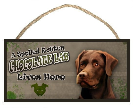"A Spoiled Rotten Chocolate Lab (Labrador Retriever) Lives Here 10"" x 5"" Wooden Sign v1"