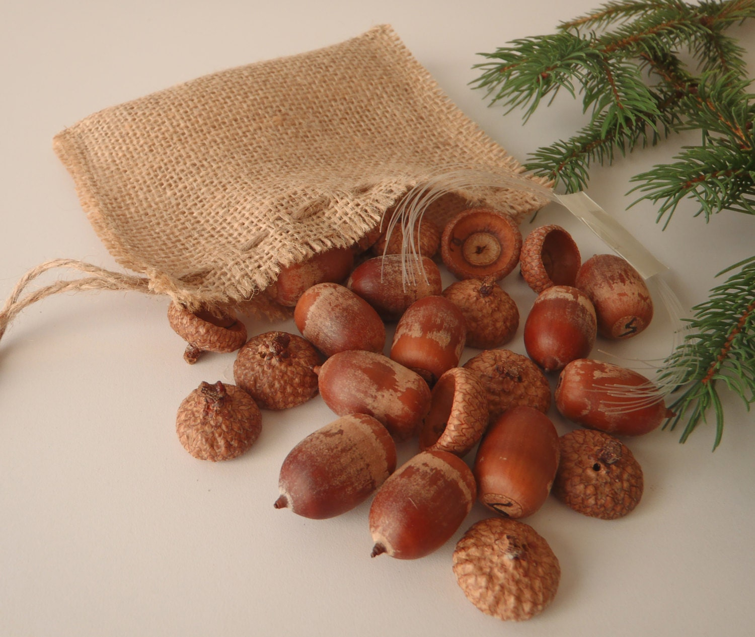 DIY Acorn Ornament Decoration Kit Set of 12 Make Your Own Glittered Acorns / Acorn Supply by FeistyFarmersWife - FeistyFarmersWife