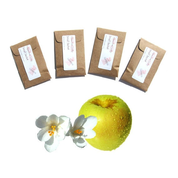 Golden Delicious Scented Envelope Sachets - Rustic Country Wedding Favor - Apple Drawer Fragrance - Yellow Brown Modern Rustic Home Decor
