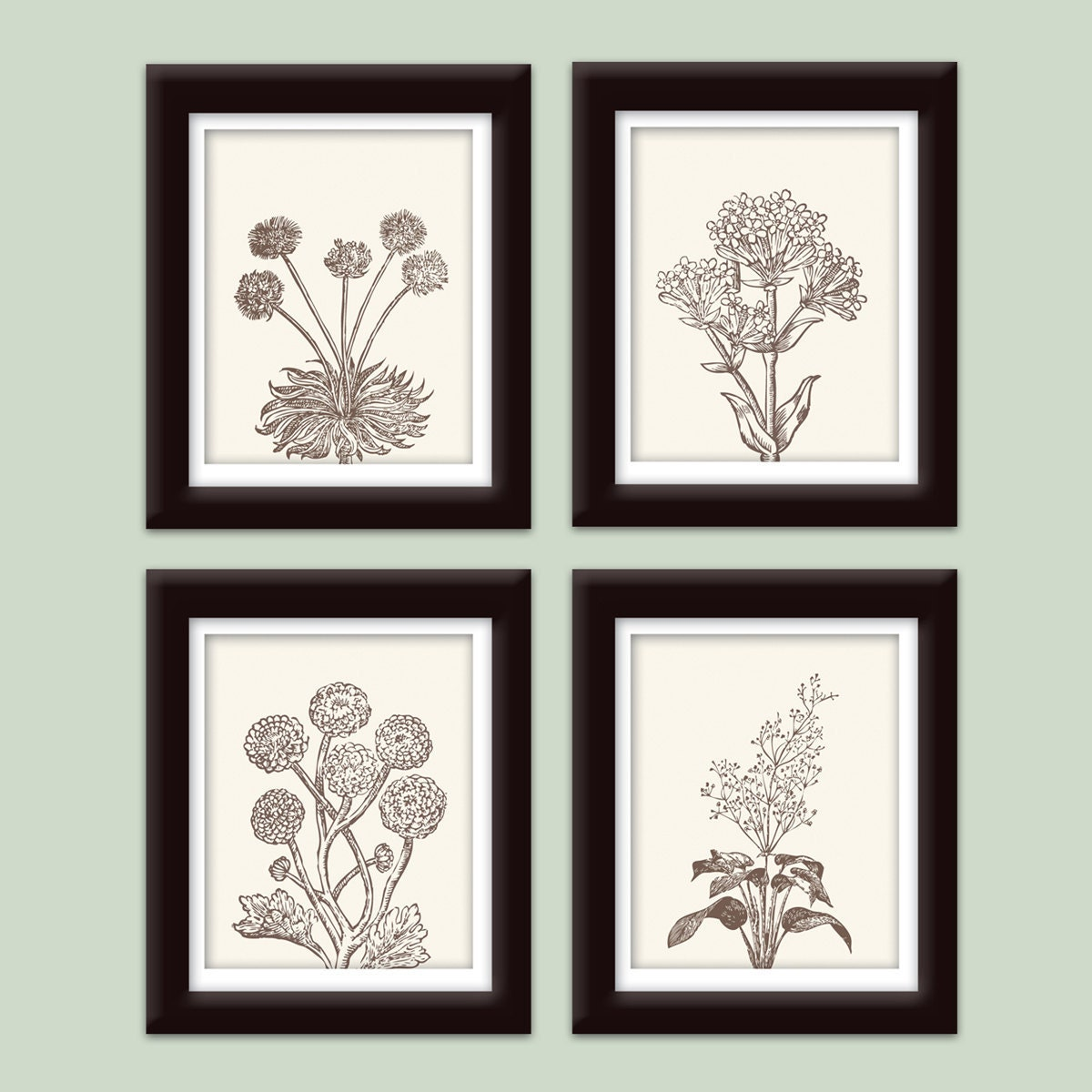 Wild Flowers Botanical Prints (Series C)-Set of 4-8x10-(Featured in Cream and Chocolate Brown)