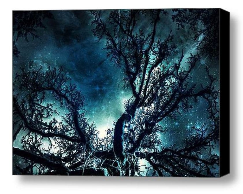 Starry Night Sky on Canvas  - Abstract Large Wall Art in Dark Blue, Teal, Turquoise, Black, and White. - StudioDandK