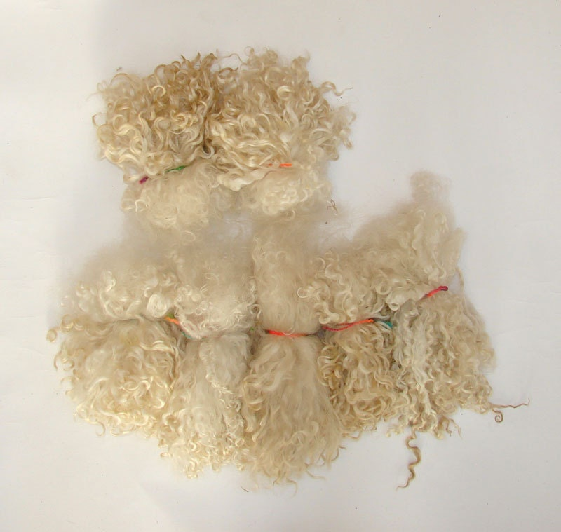 Teeswater lock  long wool locks for  Doll Hair - Blythe Doll Hair ,  Art Dolls,  , spinning and felt