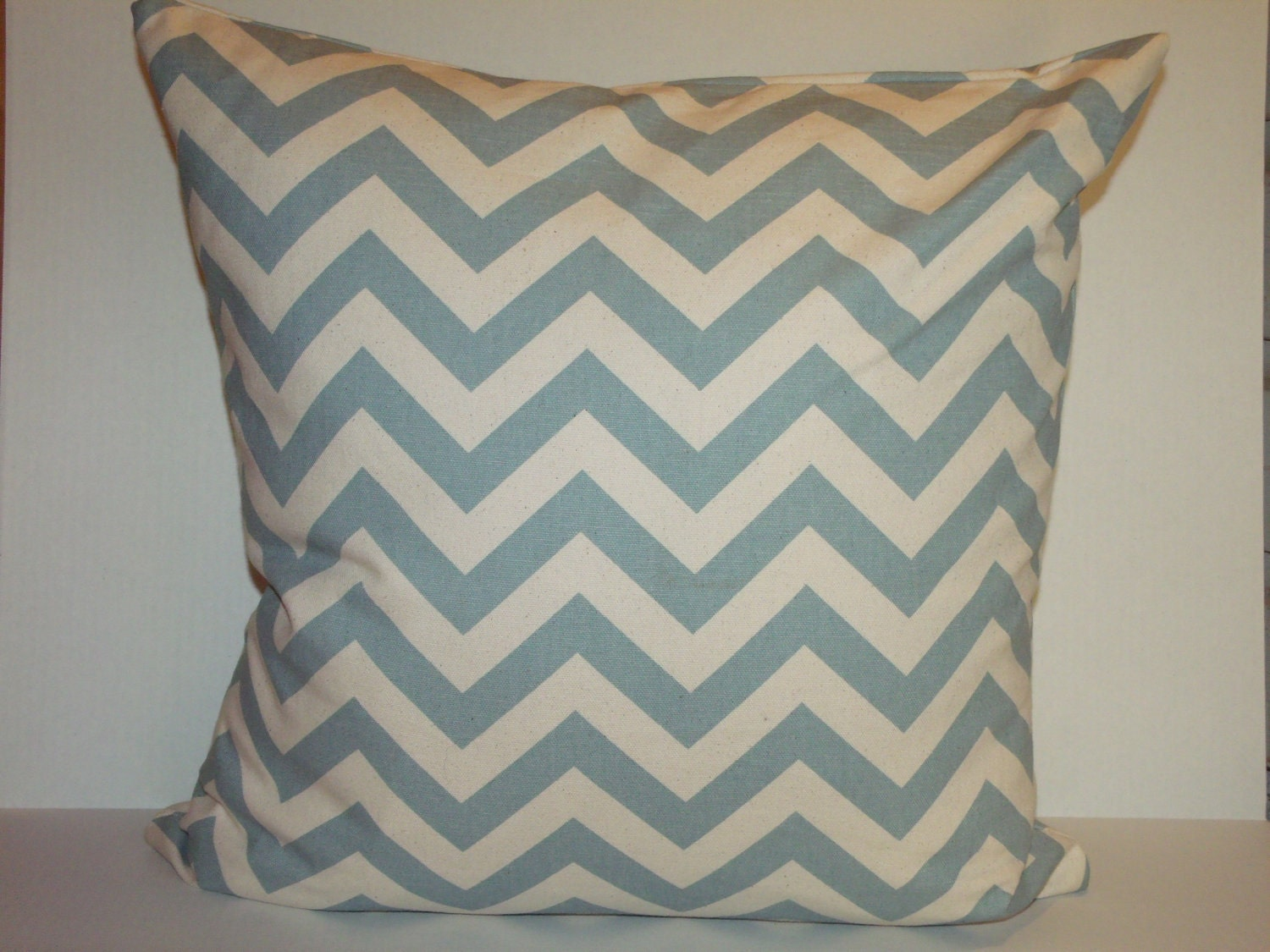 "20"" Decorative PIllow - amyswindleenglish"