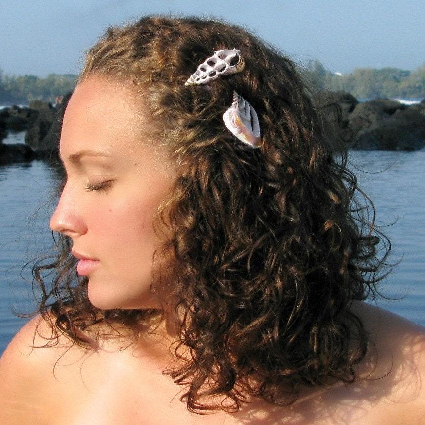 ADA небольшой разрез Cerithium зажим для волос