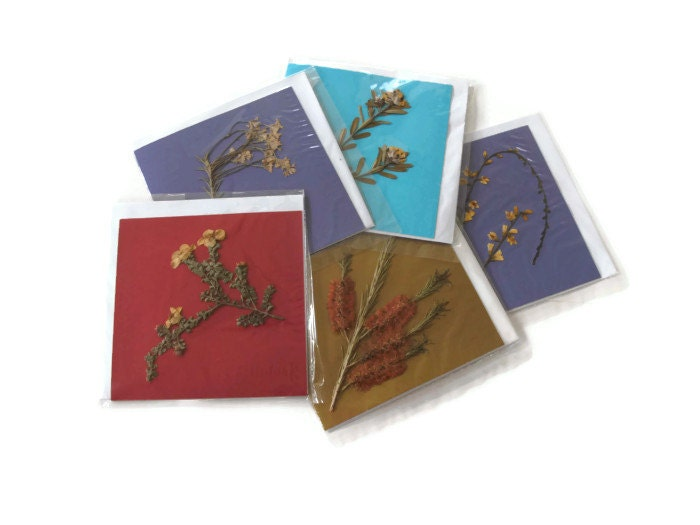 Australian pressed flower cards, real wildflowers, native plants, blank all occasion, set of five, red blue purple gold - Jillsgallery