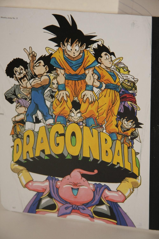 Pictures Gohan Videl Goten Trunks Y Por Detr S Goku Y Milk Fotolog