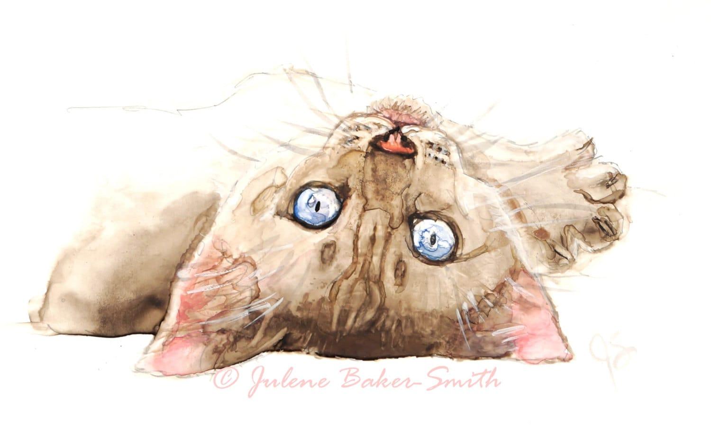 Siamese Kitten Rolling Over Fine Art Print