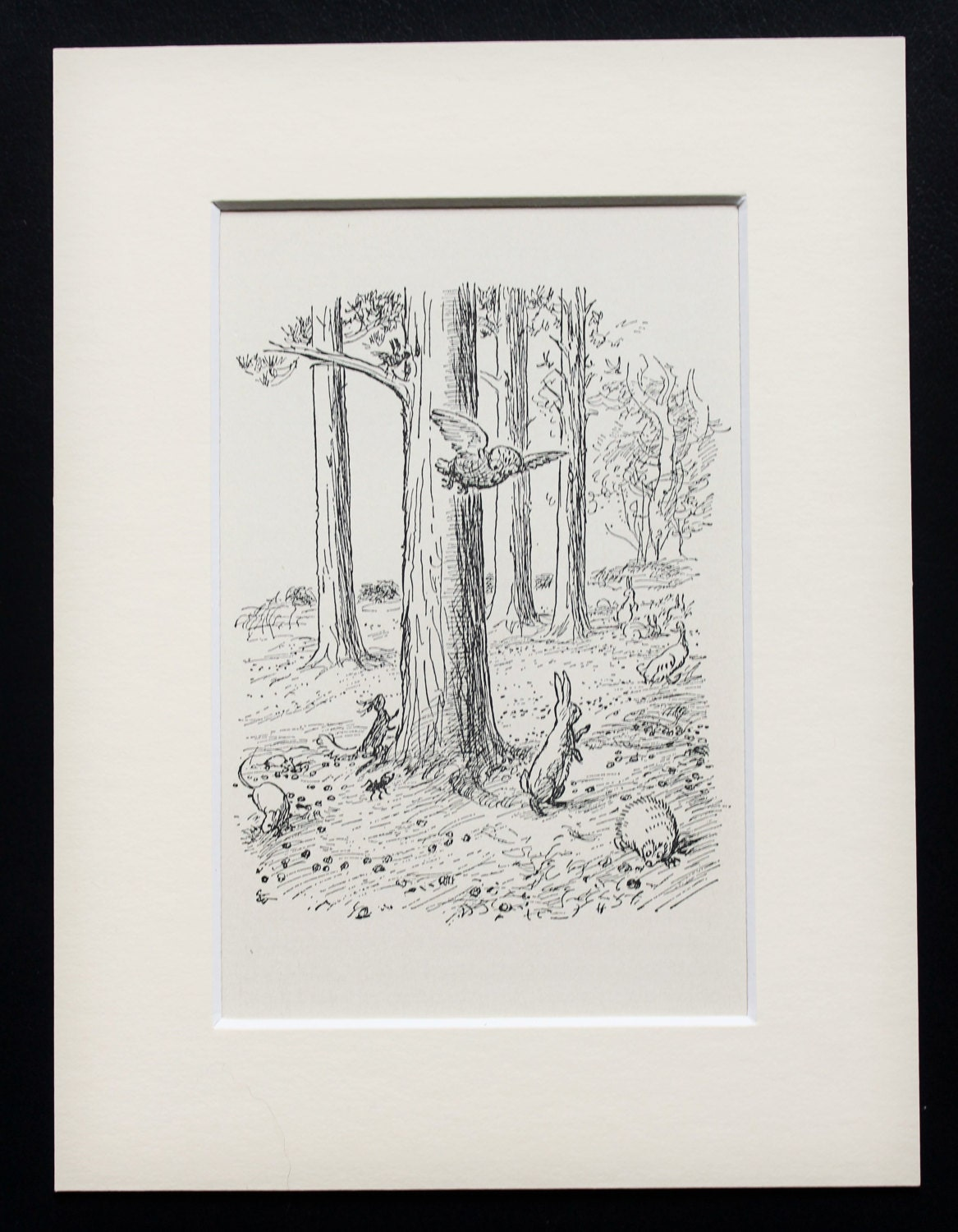 Winnie The Pooh Owl And Rabbit In The Hundred Acre Wood