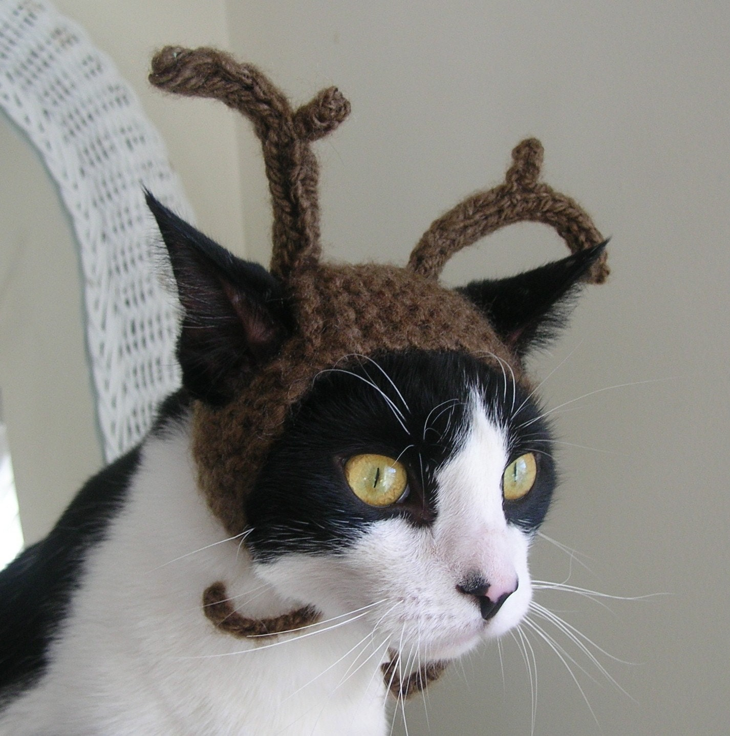 Knitting Pattern For Reindeer Hats For Dogs : The Reindeer Cat Hat by scooterKnits on Etsy