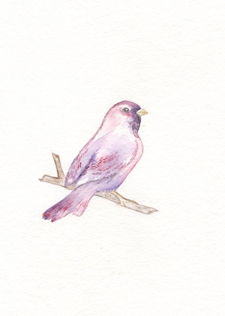 Sparrow/purple, pink and red/5x7 Watercolor Print